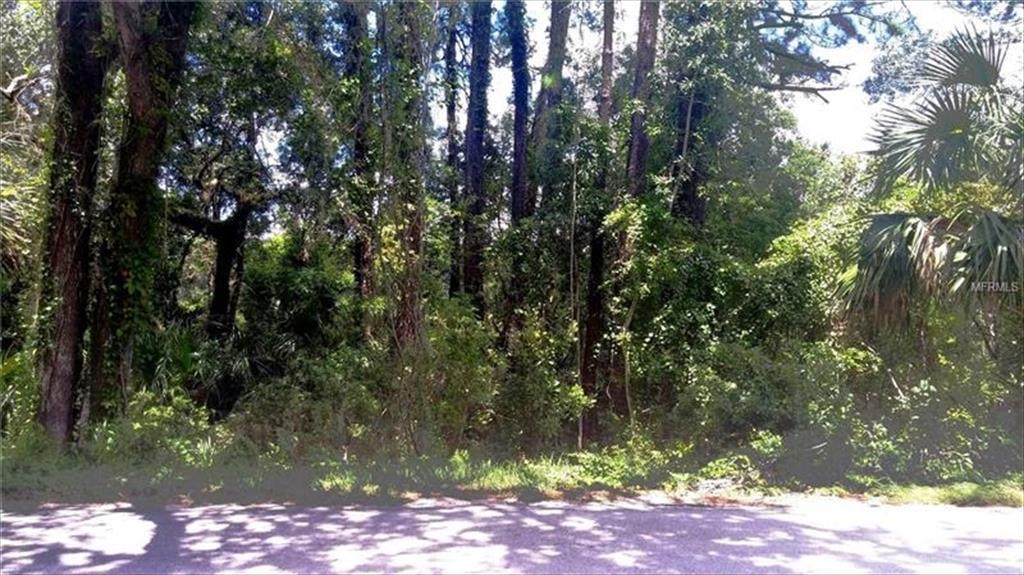 1425 E GRAVES AVE,, Orange City, FL