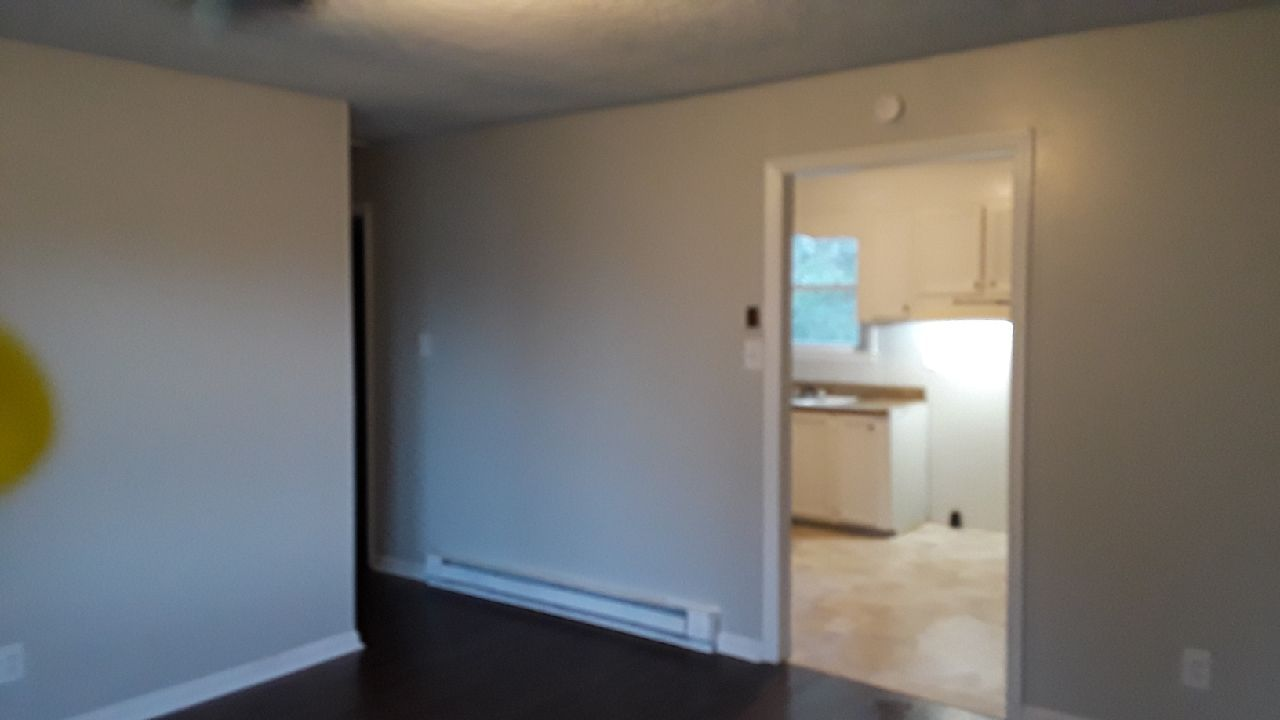 374 Anderson Dr Extension (Image - 4)