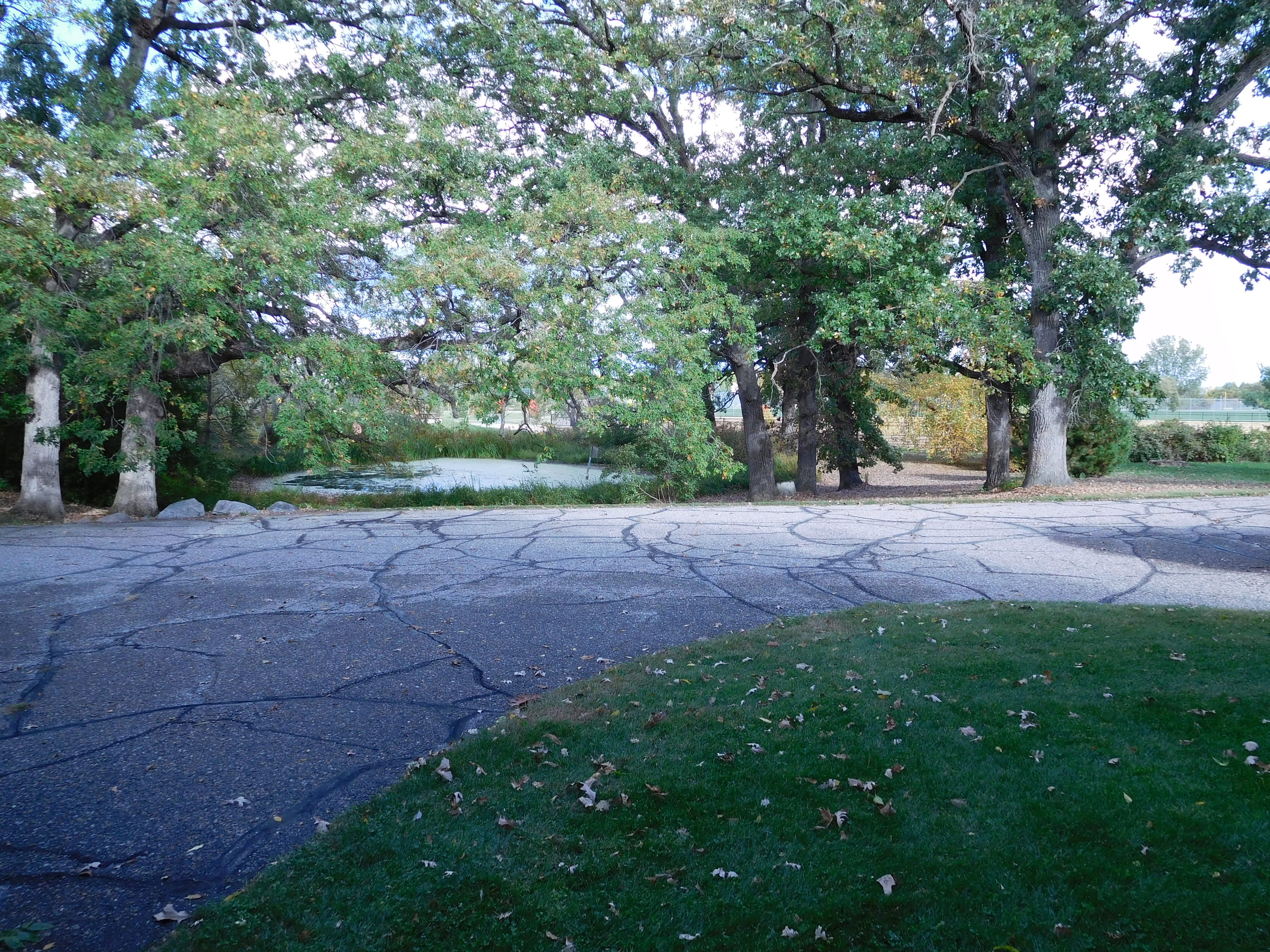 9197 Eagle Ridge Rd (Image - 4)