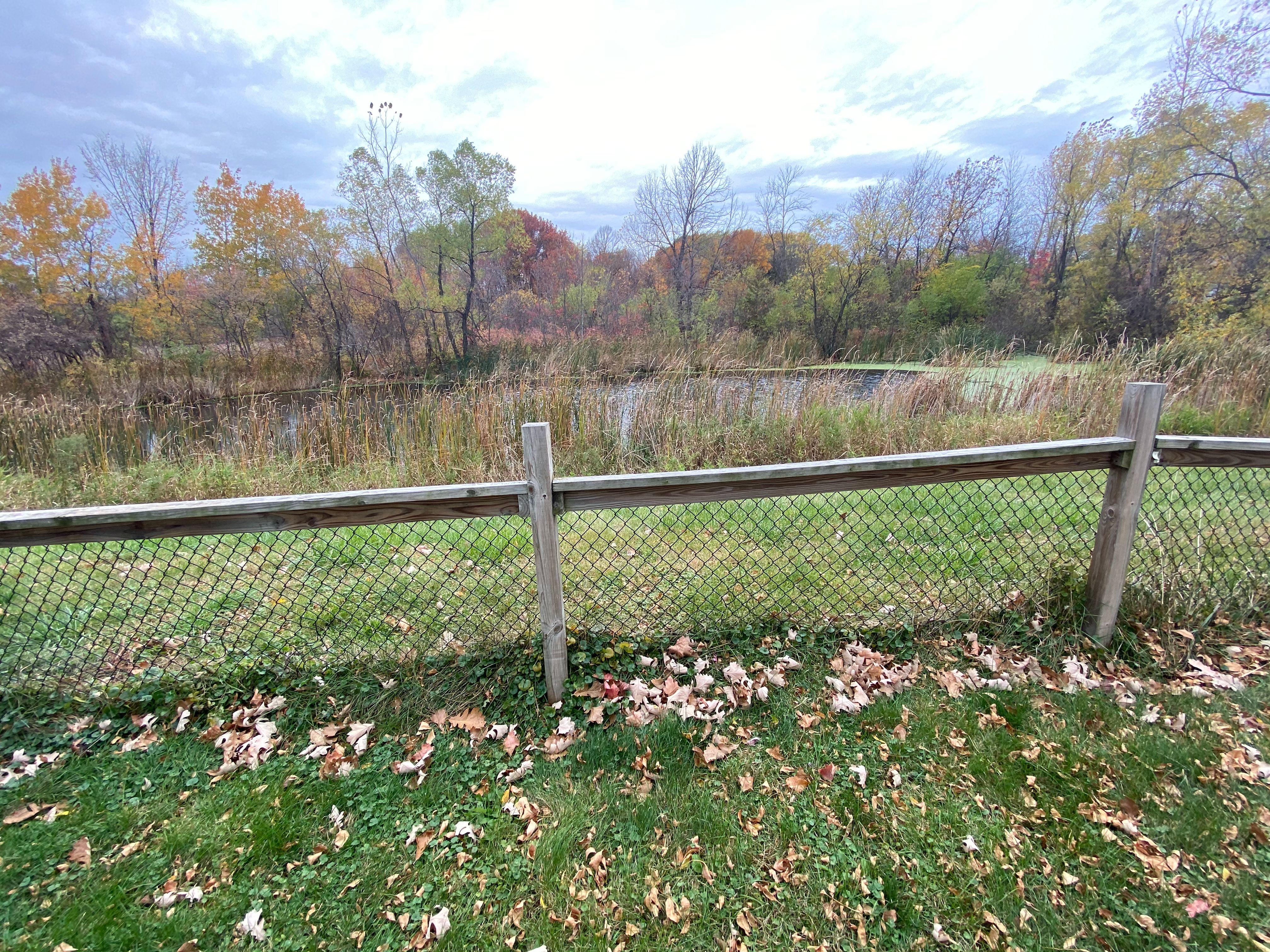 14250 Bluebird Trail NE (Image - 2)
