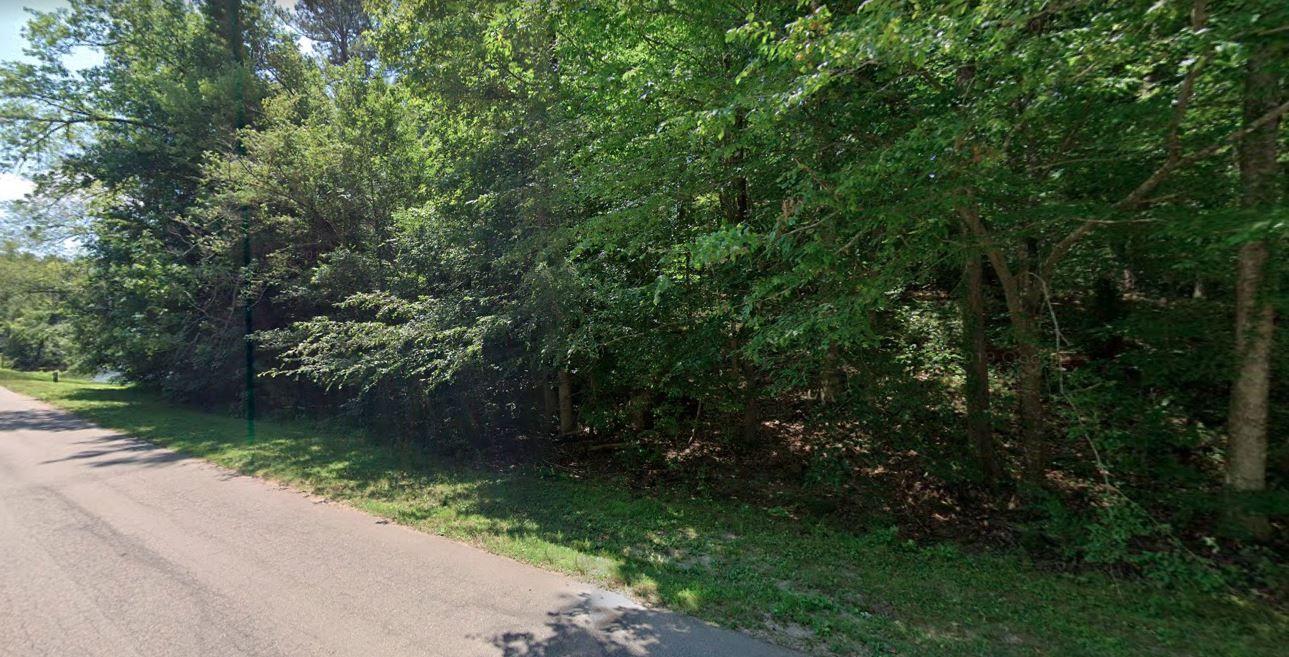 0 W Lake Anne Drive (Image - 3)
