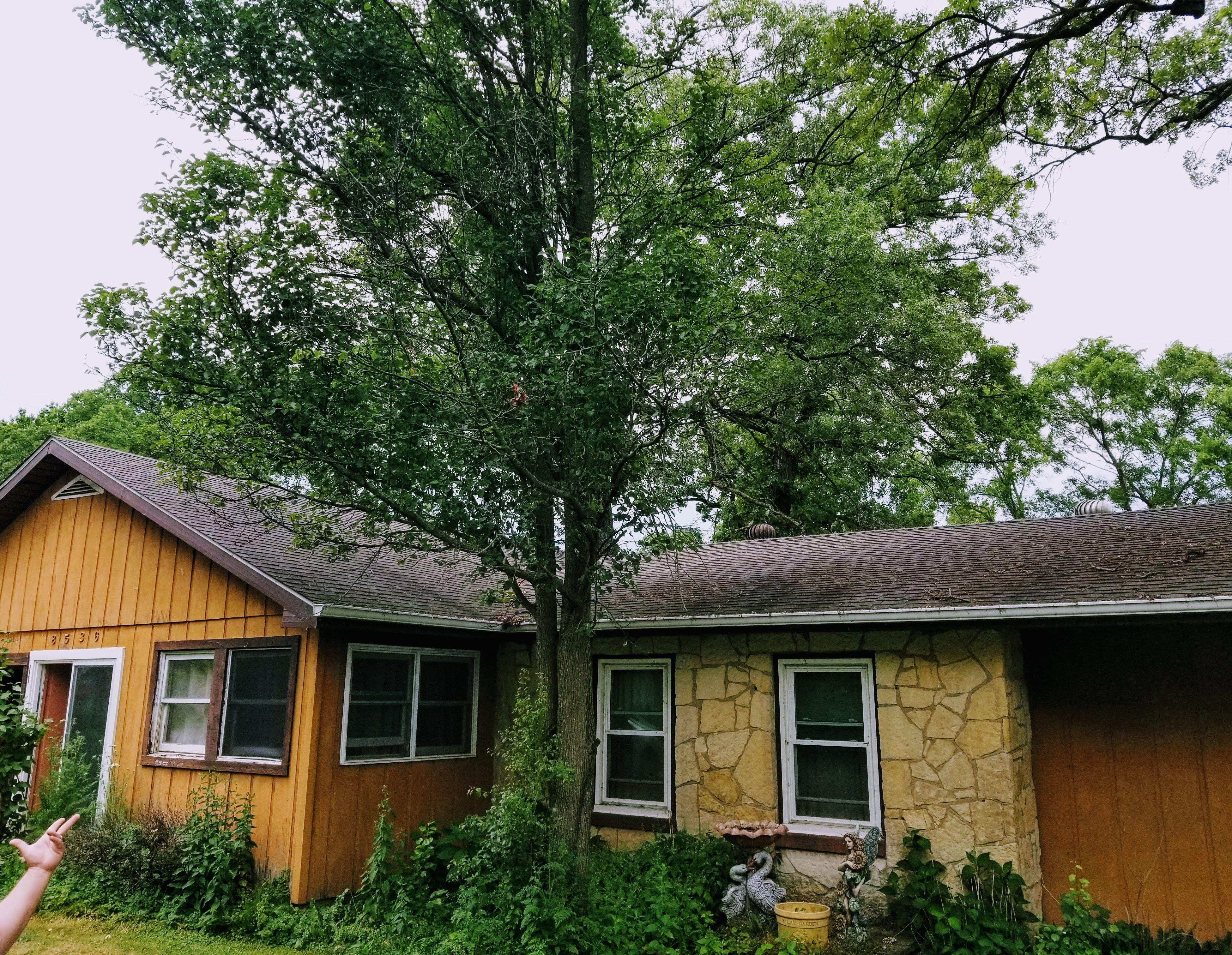 8536 W 139th Ct, Cedar Lake, IN