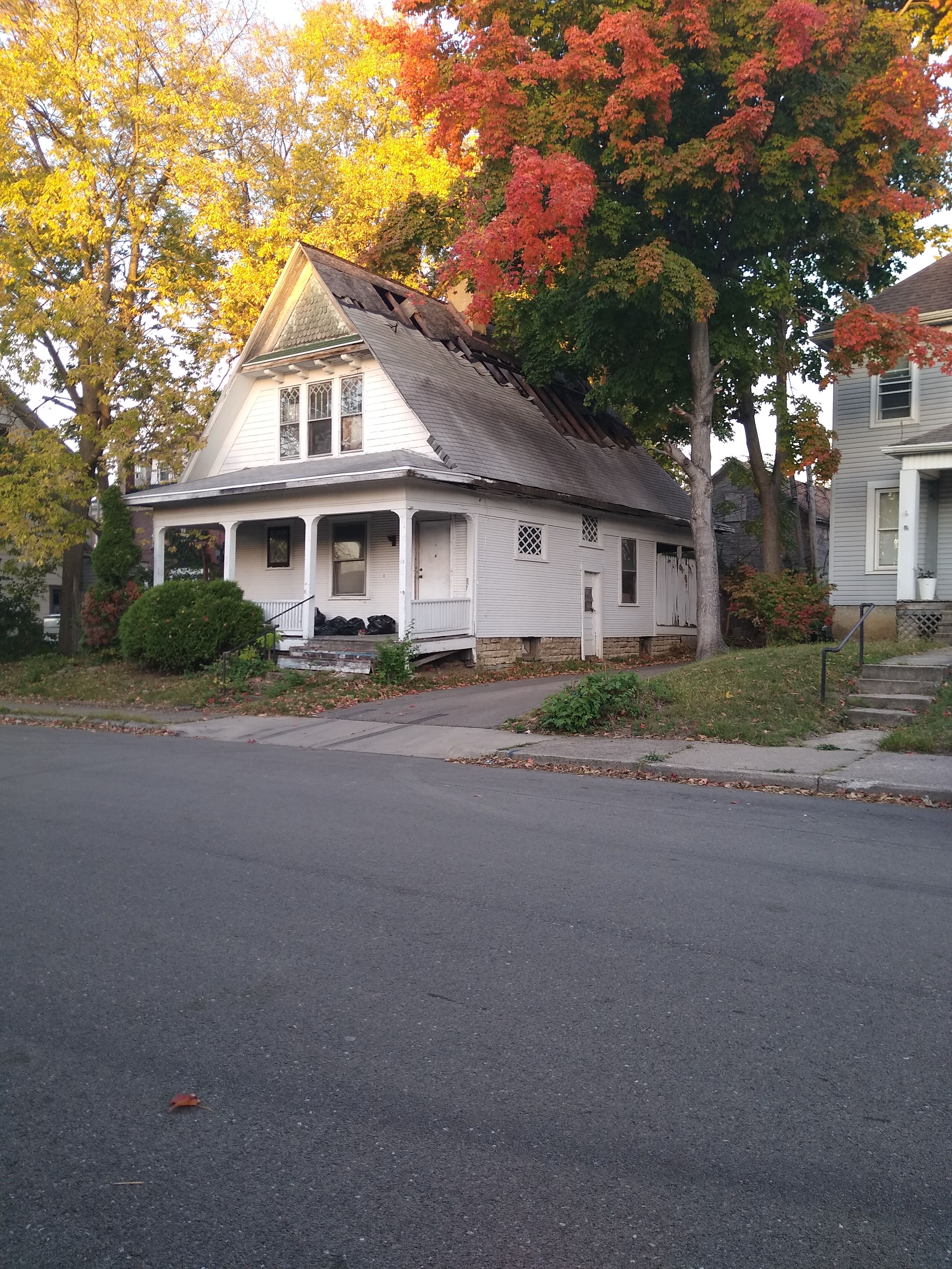 14 Parnell Ave (Image - 1)